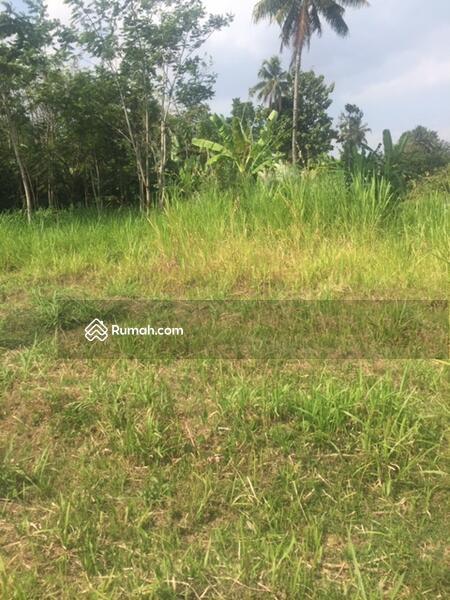 Tanah 1556 M2 Yogyakarta Desa Pendowoharjo Sleman #91064312