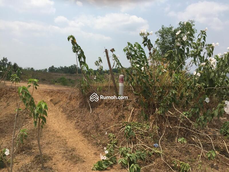 Dijual Tanah Karawang Barat Kawasan Jabar Industrial Estate (KJIE) #60896612