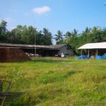 Dijual Pabrik Sabut di Lampung + Bonus Mesin Giling. Gaji Pegawai masih Relatif Murah