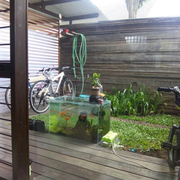 The Jarrdin Cihampelas Kota Bandung Jawa Barat: Rumah Bagus Di Tengah Kota Bandung, Babakan Ciparay