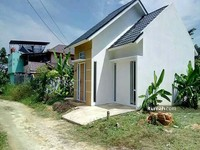 Rumah Dijual Di Bawah Rp 200 Jt Di Pekanbaru Riau Rumah