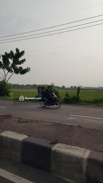 Jalan Raya Cirebon - Brebes Km. 11, Astanajapura, Cirebon, Jawa Barat 45181, Indonesia #88855810