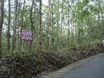 Dijual Tanah Luas Di kebumen Lokasi Sangat Strategis