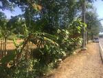 Dijual Tanah Kavling di Somagede Banyumas