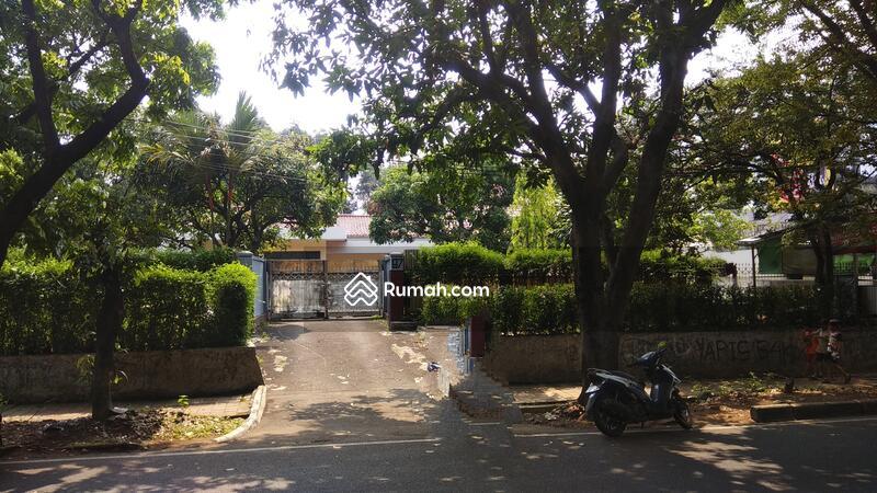 Pinggir Jalan Utama Pajajaran Kota Bogor #91842530