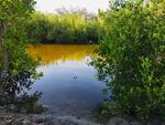 Tanah Sumba Timur, di Pinggir Pantai Palakahembi  Bersebelahan Dengan Danau