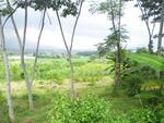 tanah murah view gunung dekat wisata eling bening