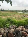 Tanah 5 are di area By Pass Munggu Tanah Lot dkt Pantai lima, Canggu, Pererenan