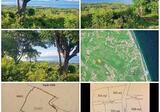 Tanah NusaPenida