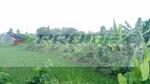 Studio Commercial Land Cisalak, Subang, Jawa Barat