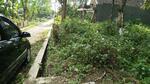 Tanah Strategis Cocok Untuk Pertanian atau Kavling di Mojokerto