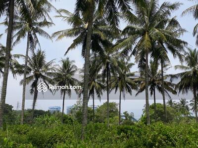 Dijual - Tanah di Pelabuhan Ratu  3, 2 Ha Pinggir Pantai/Jalan Raya