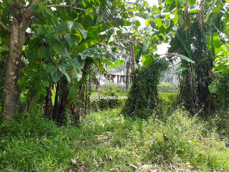 Tanah di Pelabuhan Ratu  3,2 Ha Pinggir Pantai/Jalan Raya #96551354