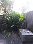 Jl. Kanda, Sanur