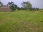 Taruma Jaya