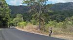 Tanah Dijual di Sembalun, Lombok Timur, NTB, Indonesia