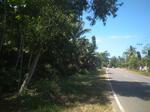 Tanah Pacitan Dekat Pantai