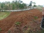 Jual Murah Tanah Luas 4 Hektar di Kp Nutug Sukabumi Jawa Barat