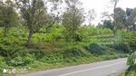 DiJual Tanah Kebun Durian Prigen lokasi strategis Nol Jalan Raya aspal, Kawasan wisata