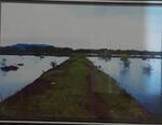 Tanah di jual  Desa Bakauheni, kec. Bakauheni kab. lampung selatan.