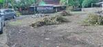 Dijual Tanah Kavling Cendrawasih Di Mlati Yogyakarta Sertifikat SHM