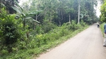 Dijual tanah dengan lokasi Sindangsari Serang