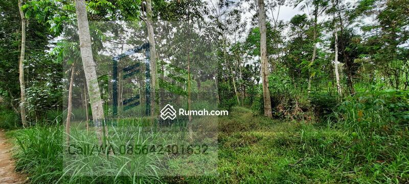 Tanah dekat jalan raya #99009212
