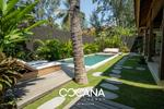 Cocana Villas and Resorts