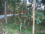 Tanah Garut jawa barat lokasi Desa Samida Garut