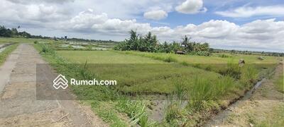 Dijual - Di jual tanah sawah produktif akses jalan subak 4 meter di area Penarungan Mengwi Dkt Sempidi lukluk
