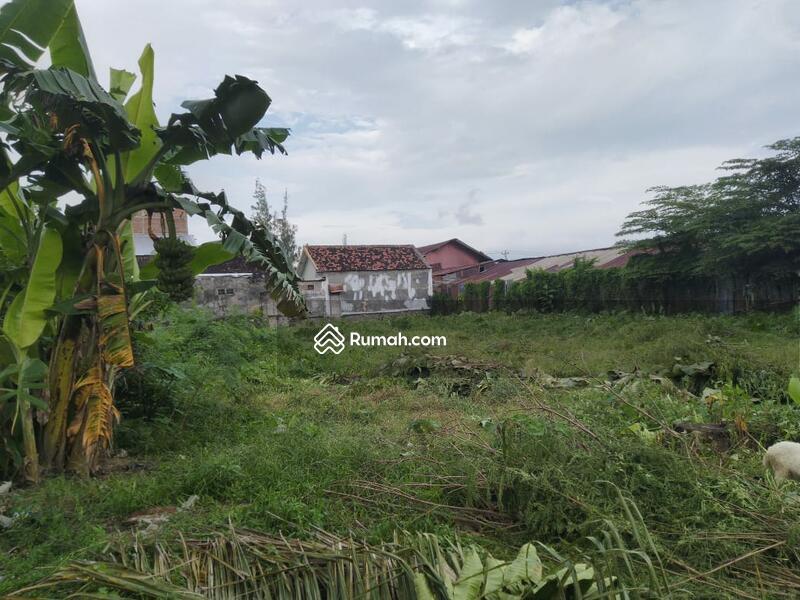 Cicilan 16jt per Bulan Tanpa Bunga Tanah Murah Dekat RingRoad Selatan #101451354