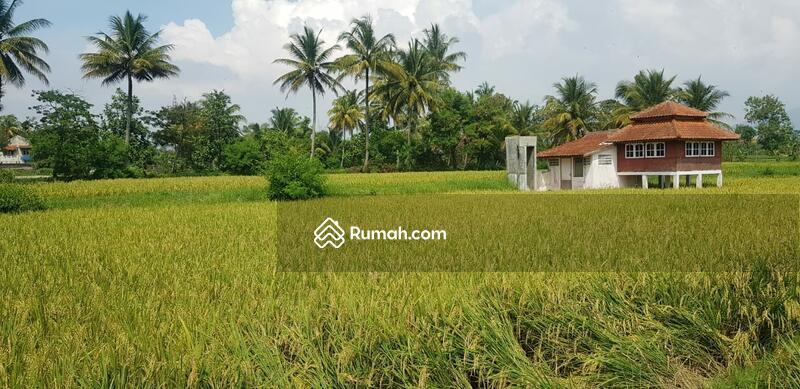 Dijual Sebidang Lahan Tanah di Karangtengah Cianjur Jawa Barat #101451522