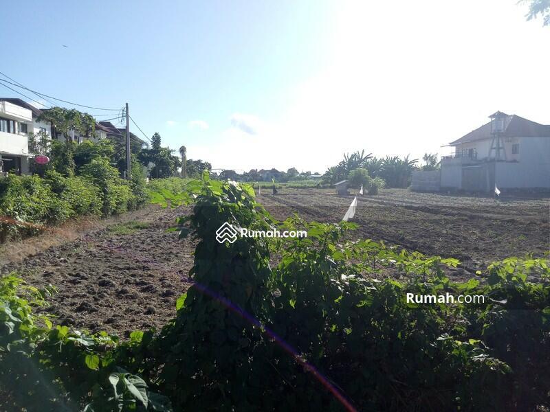 Disewakan Murah Lokasi Tanah  Renon - Jl. Tukad Badung #101591280