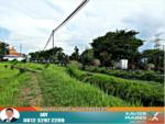 Tanah Murah Nol Jalan Pasuruan Cocok Untuk Berbagai Usaha, Grati, Pasuruan