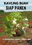 Kavling Kebun Buah Purwakarta, Buah Siap Panen Lokasi Nya Strategis