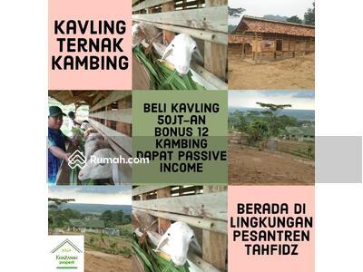Dijual - Kavling Kambing Cariu Bogor
