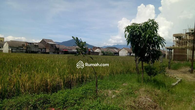 Tanah 3ha (10ha) untuk perumahan dekat stasiun Rancaekek #104271028