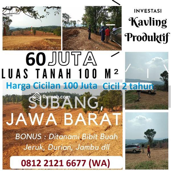 PROMO Investasi Kavling Kebun Durian Produktif di Subang Jawa Barat BIsa Dibangun Villa #103992840
