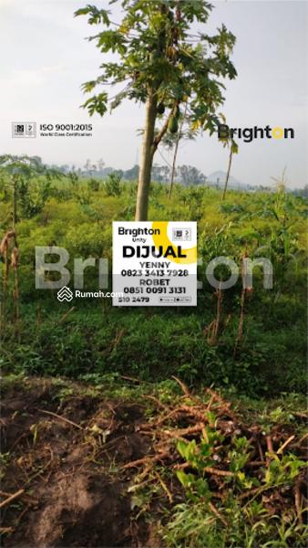 Tanah Ajung Krasan JEMBER #104395026