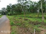 Dijual Tanah Kavling Lokasi Jatinegara Tegal Jawa Tengah