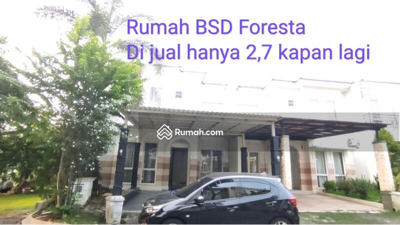 Cluster Foresta #105161300