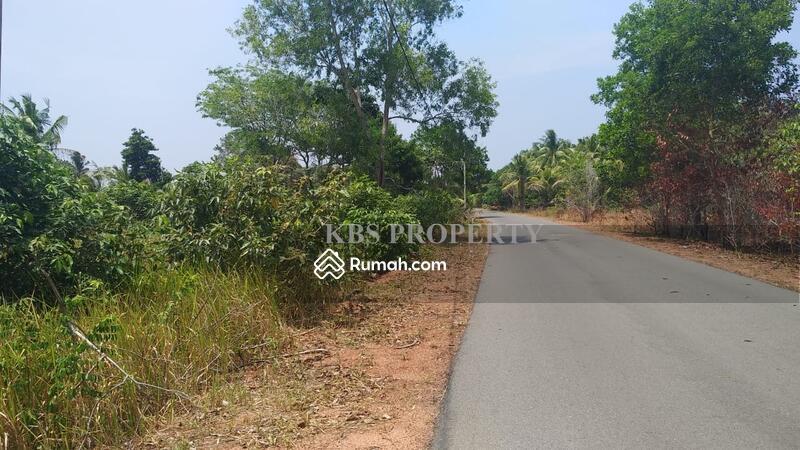 Dijual Tanah Lokasi Teluk Bakau - Tanjungpinang #105188538