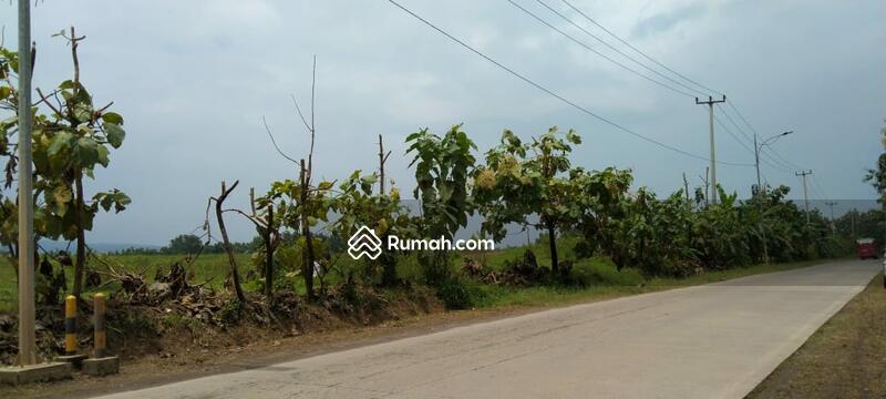 Dijual tanah indramayu Subang cikamurang cocok untuk kawasan industri akses dekat toll dan bandara #105194394
