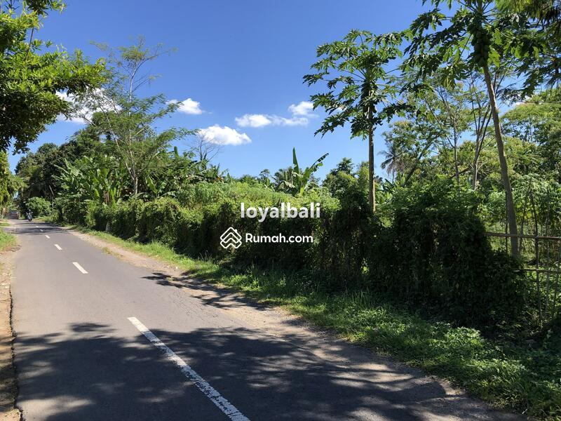 Loyal Bali Property #105199318