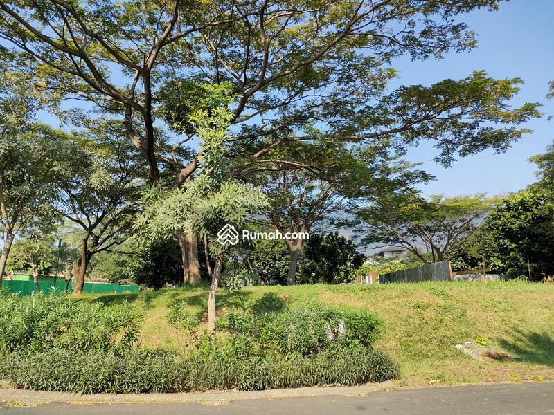 Royal Ochard Langka Jalan Utama Nego Sampe Deal!!! #105200338