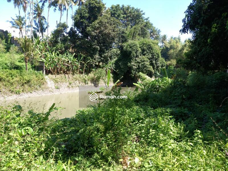 Dijual tanah los sungai di pantai Nyanyi dekat tanah lot & Canggu - Bali #105200976