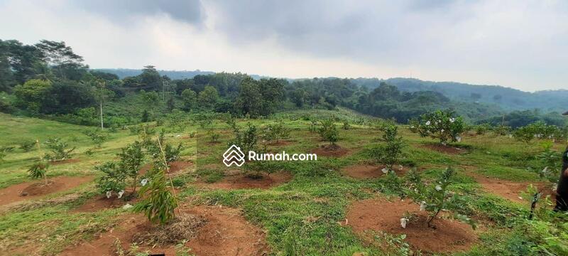 Investasi sekaligus beramal, kavling kebun untuk pembangunan pasantren #105222924