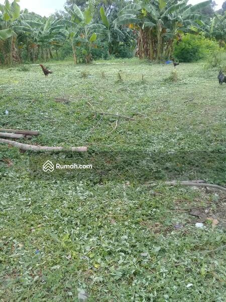 Tanah Kavling Mampang Prapatan Jakarta Selatan #105232736