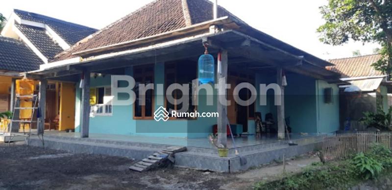 Rumah Dijual Keloncing Patemon Pakusari Jember #105285838