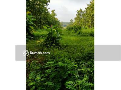 Dijual - Dijual Cepat Murah Tanah di Madiun Seluas 2970 m2 - Lokasi Strategis - Cocok untuk pembangunan perum